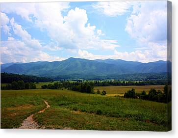 Cades Cove Canvas Print by Susie Weaver