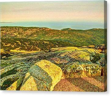 Cadillac Mountain Canvas Print by Frank SantAgata