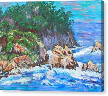 California Coast Canvas Print by Carolyn Donnell