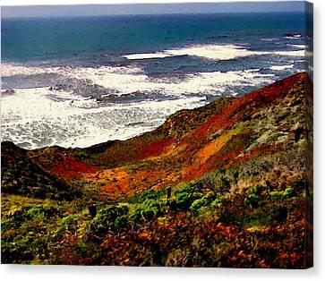 California Coastline Canvas Print by Bob and Nadine Johnston