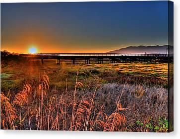 Canvas Print featuring the photograph California Sunset by Marta Cavazos-Hernandez