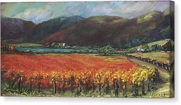 Calistoga Vineyard In Napa Valley By Deirdre Shibano Canvas Print by Deirdre Shibano