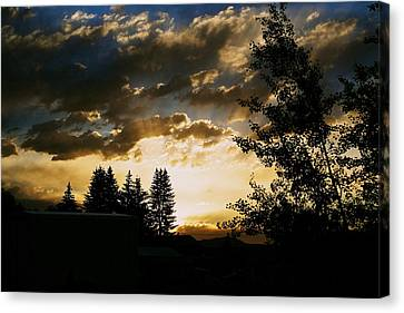 Calling Canvas Print by Kevin Bone