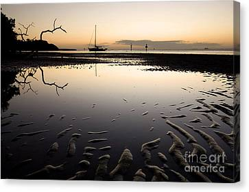 Calm Harbor At Dusk Canvas Print by Matt Tilghman