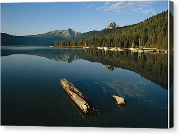 Calm Water With Submerged Log Canvas Print by Michael S. Lewis