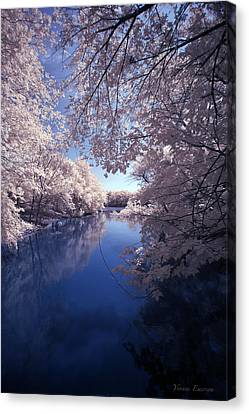 Canvas Print featuring the photograph Calm by Yvonne Emerson AKA RavenSoul