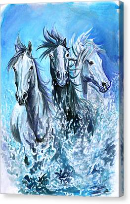 Camargue Horses Canvas Print by Jana Goode