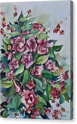 Camellias  Canvas Print by Daniel Boone