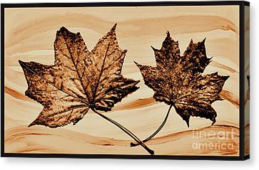 Canadian Leaf Canvas Print