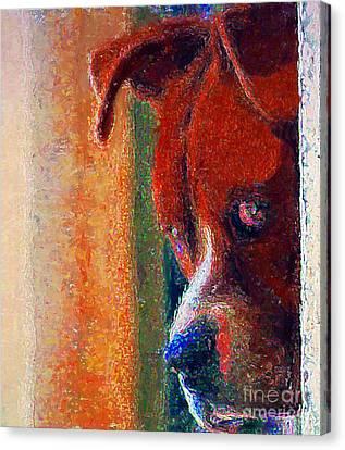 Canelo Wants In 2 Canvas Print by John  Kolenberg