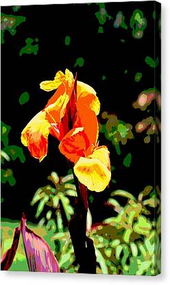 Canna In Summer Canvas Print by Dorrie Pelzer