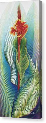 Canna Striata Canvas Print