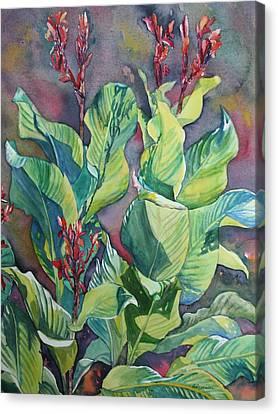 Cannas Canvas Print by Ruth Greenlaw