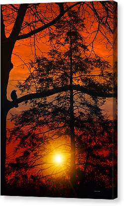 Can't Wait Until Tommorrow Canvas Print by Tom York Images