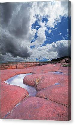 Canyon Pools Canvas Print by Ric Soulen