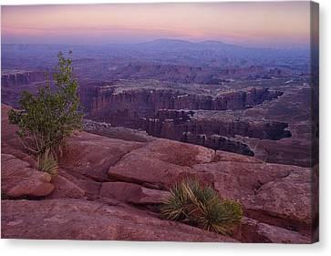 Canyonlands At Dusk Canvas Print