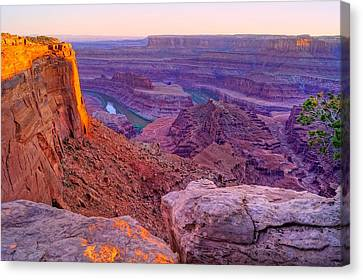 Canyonlands Magical Light Canvas Print by Scott McGuire