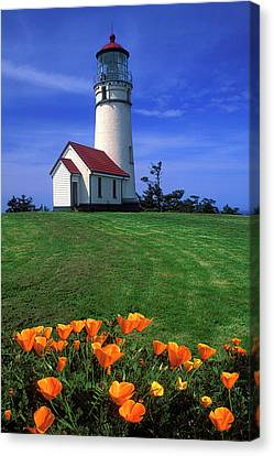 Cape Blanco Lighthouse Oregon Canvas Print by Dave Mills