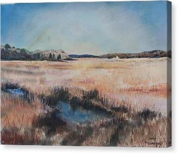 Cape Cod Marsh Canvas Print by Geoffrey Workman