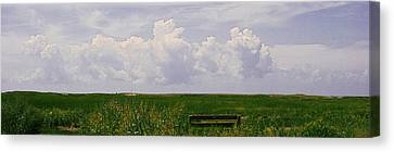 Canvas Print featuring the photograph Cape Marsh by Michael Friedman