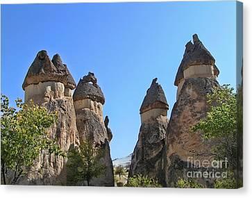 Capped Rock Formations Of Cappadocia Canvas Print