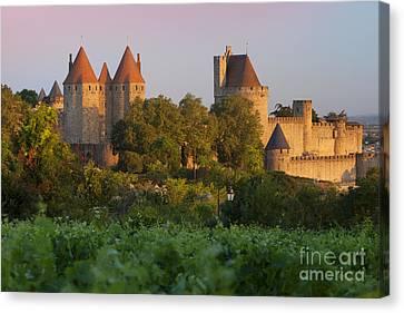 Carcassonne Dawn Canvas Print by Brian Jannsen
