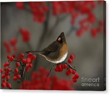 Cardinal Among The Berries Canvas Print