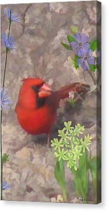 Cardinal Springtime Canvas Print by Debra     Vatalaro