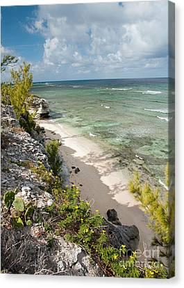 Caribbean Shoreline Canvas Print by Jim Chamberlain