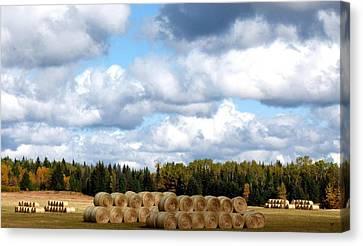 Cariboo Ranching Country Canvas Print by Will Borden