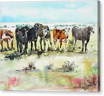 Canvas Print featuring the painting Carol's Cows by Tom Riggs