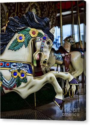Carousel Horse 5 Canvas Print by Paul Ward