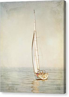 Carpe Diem Canvas Print by Karen Lynch