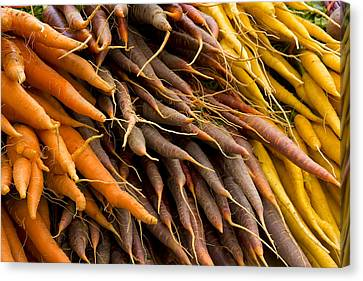 Carrots Canvas Print by Michael Friedman