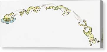Frog Watercolor Canvas Print - Cartoon Of Frog Sitting On Water Lily And Frogs Jumping by Dorling Kindersley