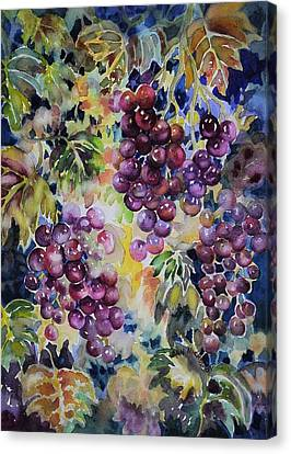Cascade Canvas Print by Ann  Nicholson