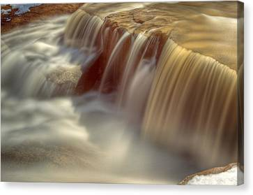 Cascade At Blue Hen Falls Canvas Print by Jennifer Grover