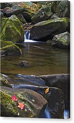 Cascade At Jones Gap Canvas Print by Rob Travis