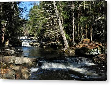 Canvas Print featuring the photograph Cascade In The Catskills by Diane Lent