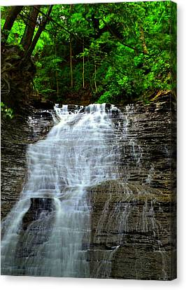 Cascading Falls Canvas Print by Frozen in Time Fine Art Photography