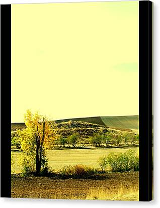 Castilla La Mancha Spain Canvas Print