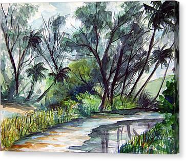 Casuarinas And Palms Canvas Print by Jon Shepodd