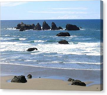Canvas Print featuring the photograph Cat And Kittens Rocks by Will Borden