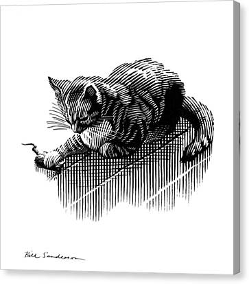 Cat And Mouse, Artwork Canvas Print by Bill Sanderson