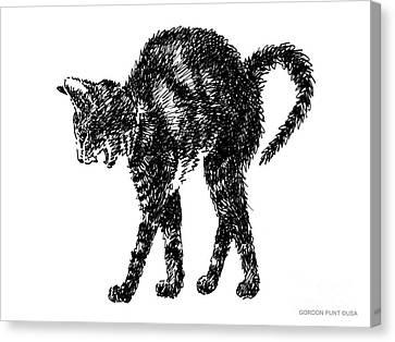 Cat-artwork-prints-2 Canvas Print by Gordon Punt