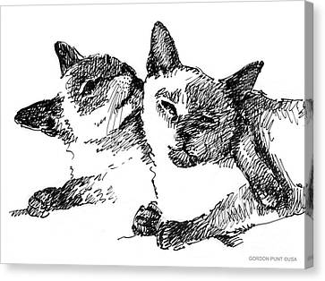 Cat-drawings-siamese-2 Canvas Print by Gordon Punt