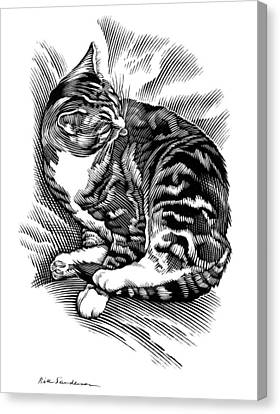 Cat Grooming Its Fur, Artwork Canvas Print by Bill Sanderson
