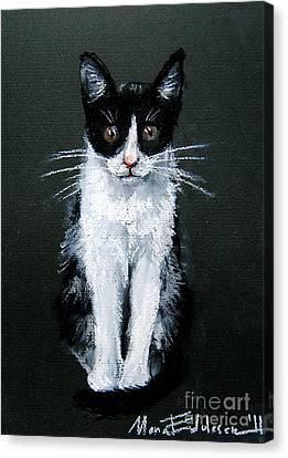Cat I Canvas Print by Mona Edulesco