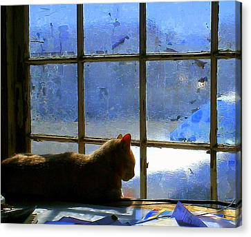 Cat In The Window Canvas Print by Randall Weidner