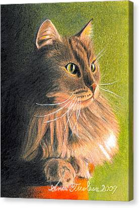 Canvas Print featuring the drawing Cat Miniature by Ana Tirolese